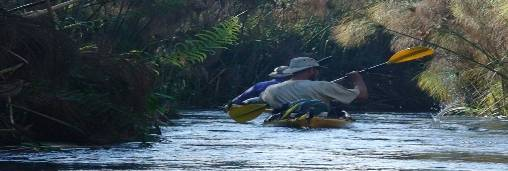 kayaking the wild Okavango